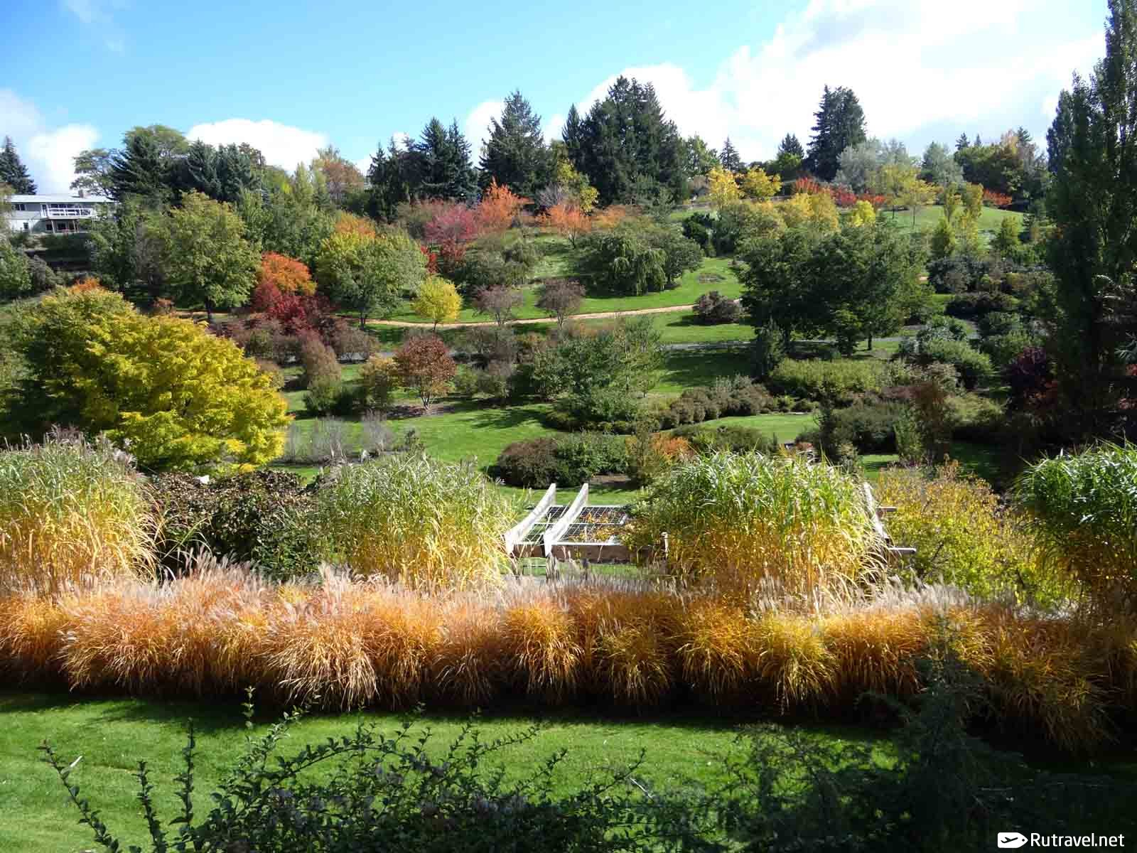 ботанический сад москва знакомства россия
